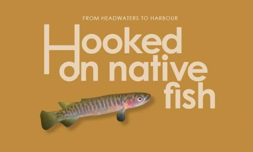 Hooked on Native Fish